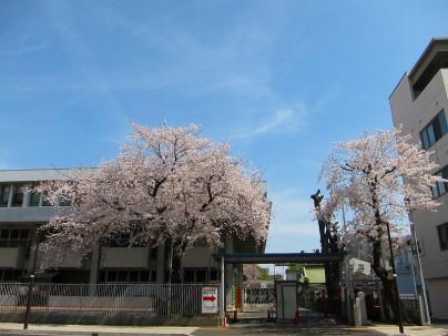 2021.3.27桜001
